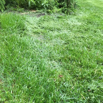 S & S Lawn Services - 10 Photos & 12 Reviews - Landscaping