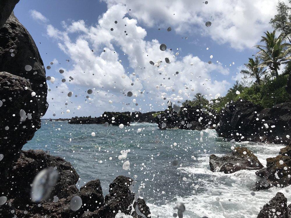 Aloha Eco Adventures: Haiku-Pauwela, HI