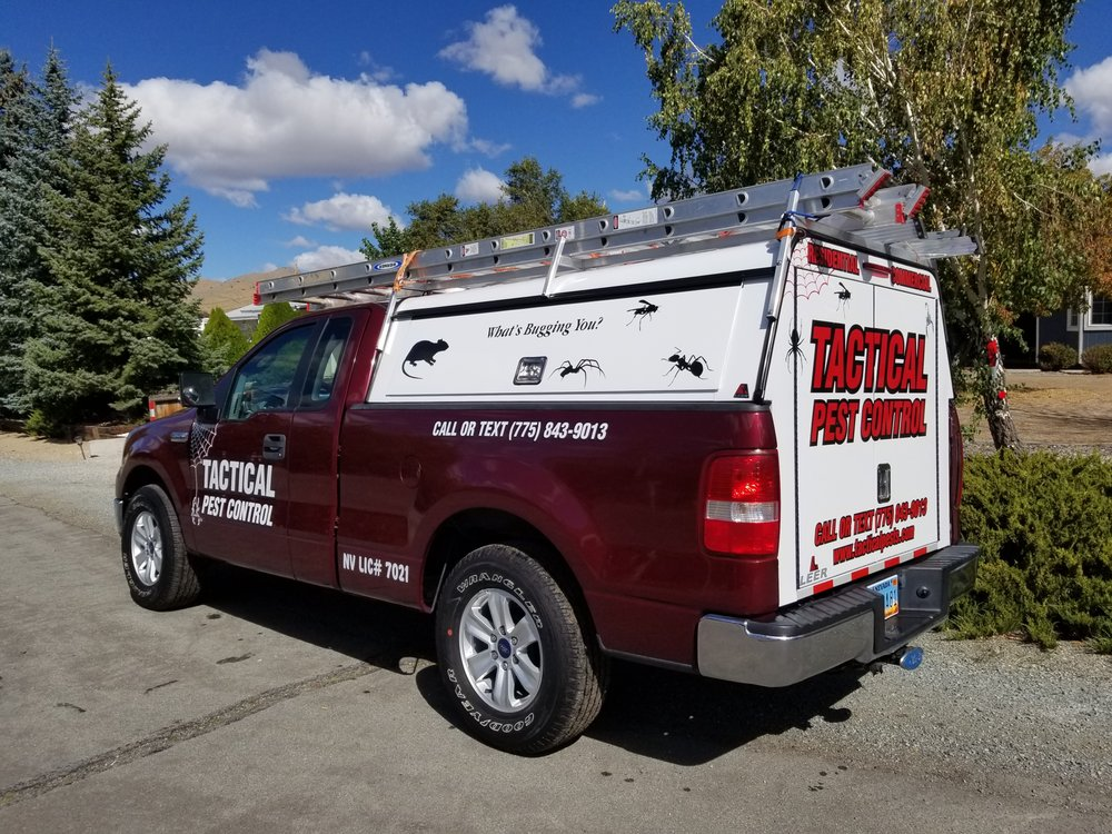 Tactical Pest Control: Reno, NV