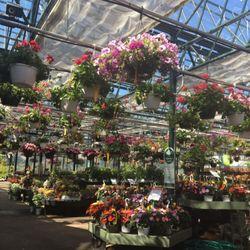 Mahoney S Garden Center 14 Photos Gardening Centres 1625 Sudbury Rd Concord Ma United