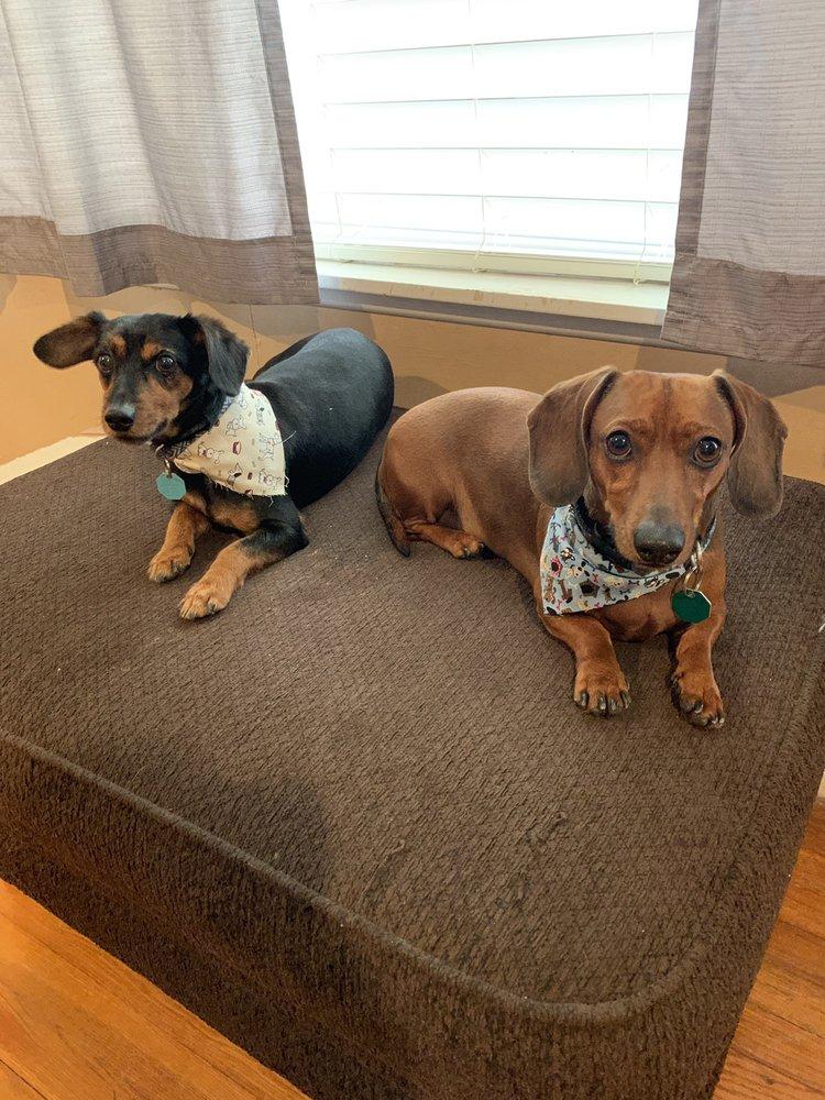 Happy Snoutz Pet Resort: 7717 Long Point Rd, Houston, TX