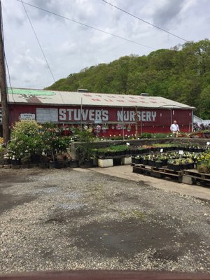 Photo Of Stuver S Riverside Nursery Johnstown Pa United States Main Building