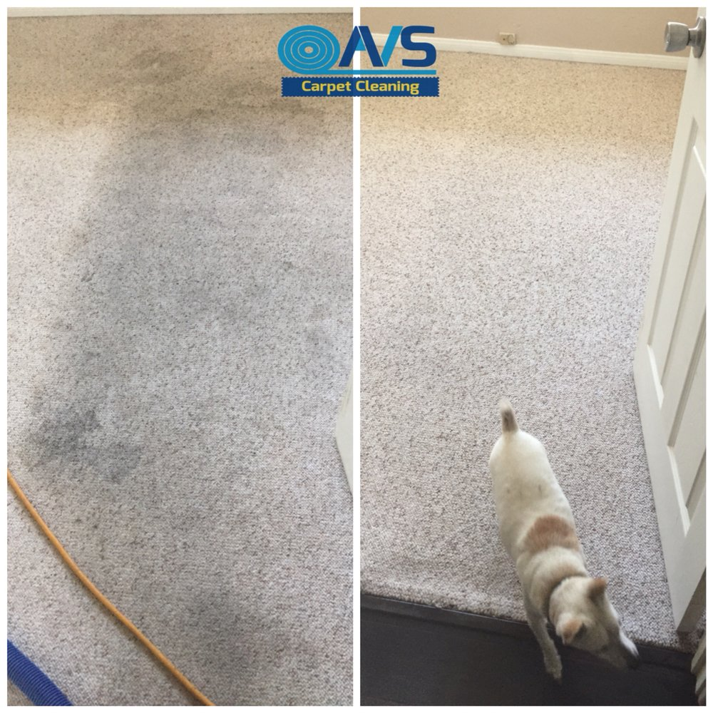 AVS Carpet Cleaning