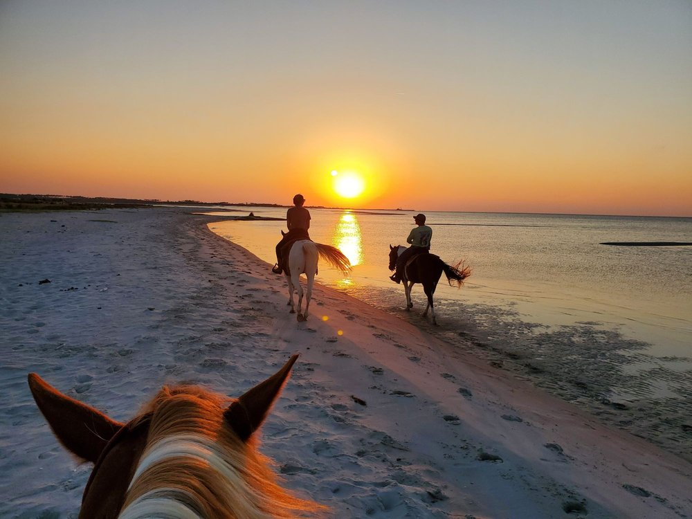 Outer Banks Riding Stables: Cedar Island, NC