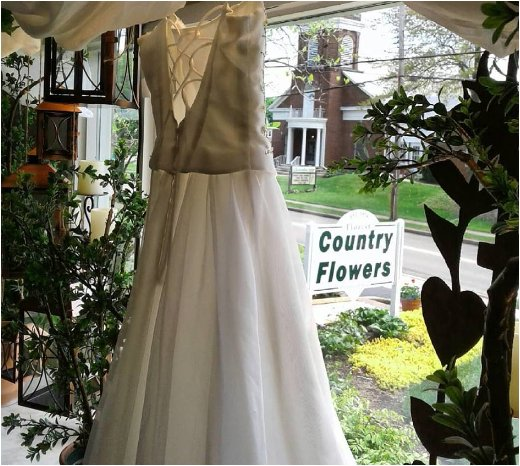 Country Flowers & Herbs: 425 S Prospect Ave, Hartville, OH
