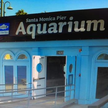 Santa Monica Pier Aquarium 230 Photos 99 Reviews