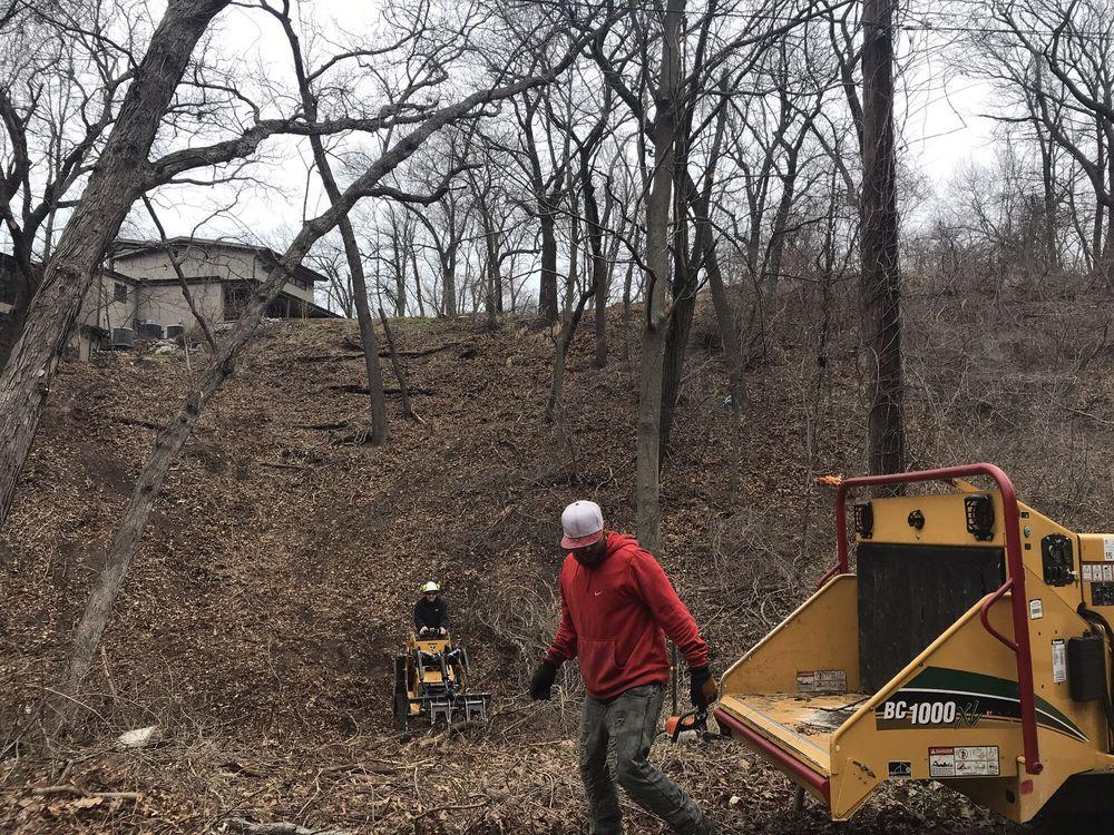 Justin's Tree Service: 275 Lake Park Rd, Burns Harbor, IN
