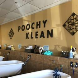 Poochy klean 68 photos 79 reviews pet groomers 3585 s photo of poochy klean las vegas nv united states solutioingenieria Gallery