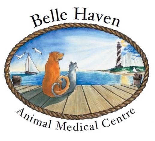 Belle Haven Animal Medical Centre: 1221 Belle Haven Rd, Alexandria, VA