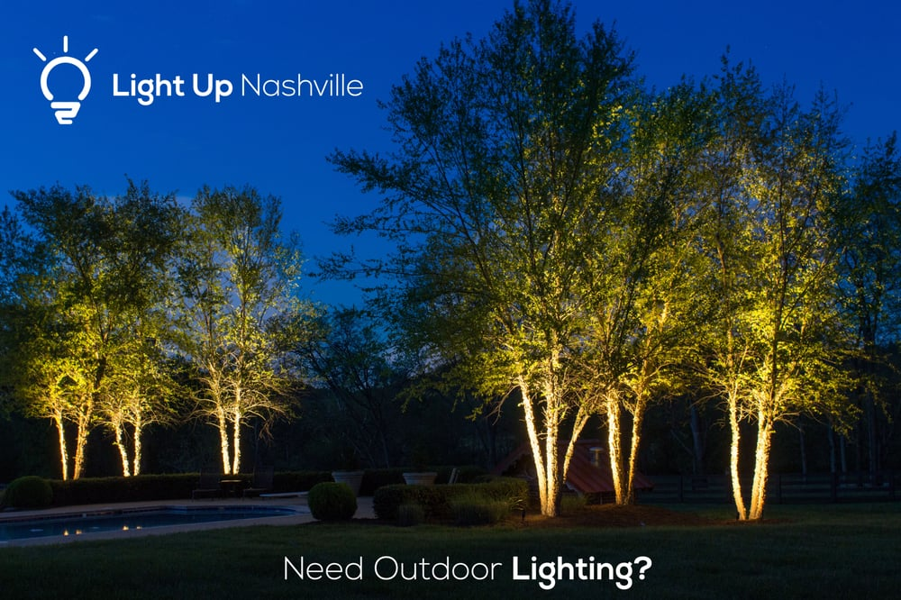 Up lighting on birch trees creates a wonderful effect we for Quality landscape lighting