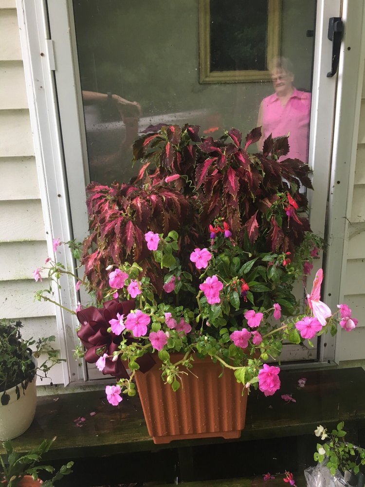 Tinkers Dam Florist & Gifts: 501 Main St, Harrisville, PA