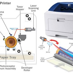 Chicago Printer Repair - (New) 13 Reviews - IT Services