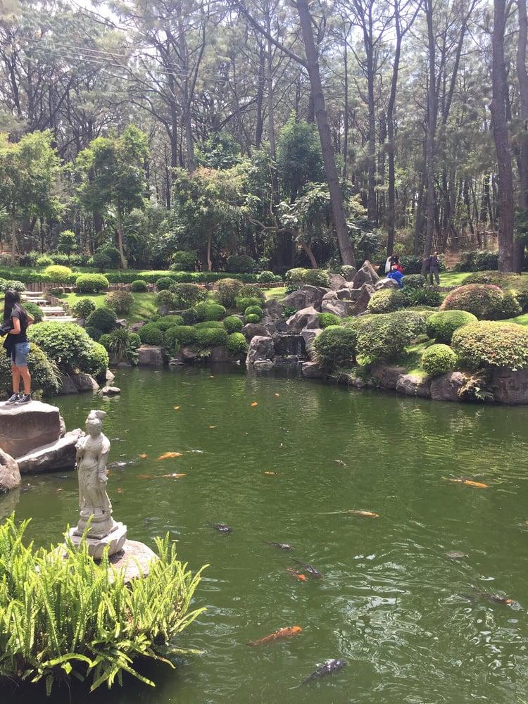 Jard n japon s 14 fotos y 16 rese as jardines for Carson bosque y jardin