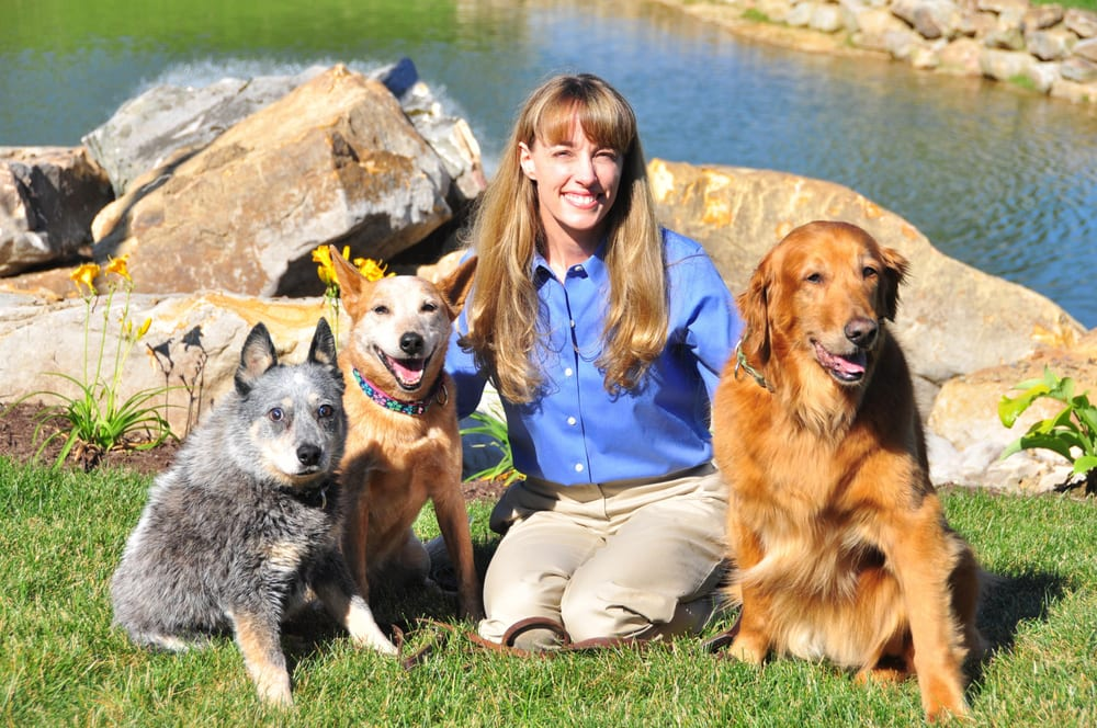 Nemacolin Wooflands Pet Resort & Spa: 3945 National Pike, Farmington, PA