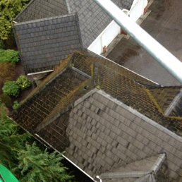 Delightful Photo Of Eastside Roof Cleaning   Woodinville, WA, United States