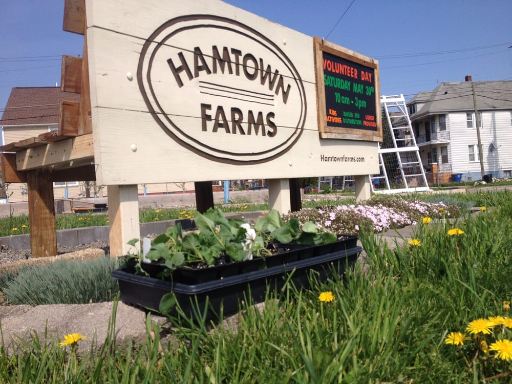 Hamtown Farms: 9100 Lumpkin, Hamtramck, MI