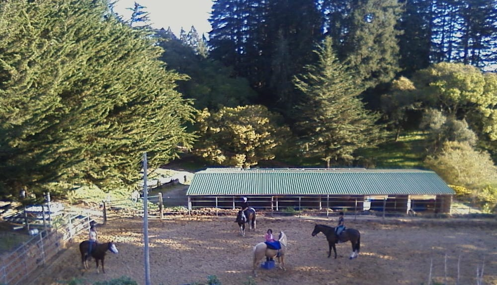 Morning Sun Ranch
