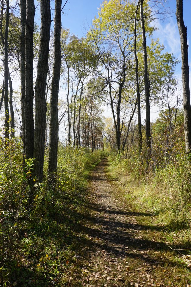 Scuppernong Springs Nature Trail: County Rd Zz, Dousman, WI