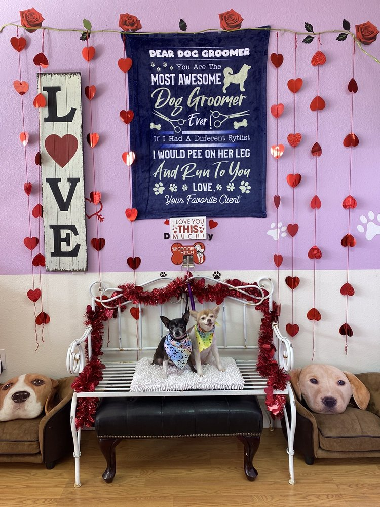 Cupid Doggie Spa