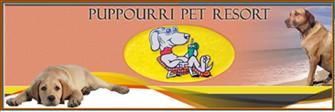 Puppourri Pet Resort: 598 Berwyn Ave, New Kensington, PA