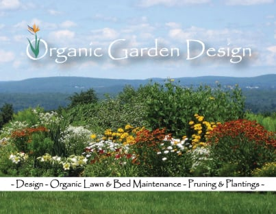 Organic Garden Design soil condition how to start an organic garden from scratch Photo Of Organic Garden Design Sterling Ma United States Organicgardendesignus