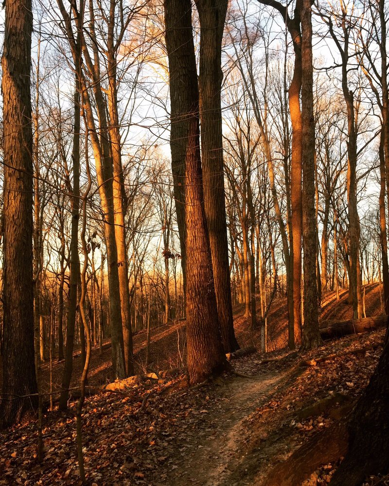 Fort Harrison State Park: 5753 Glenn Rd, Indianapolis, IN