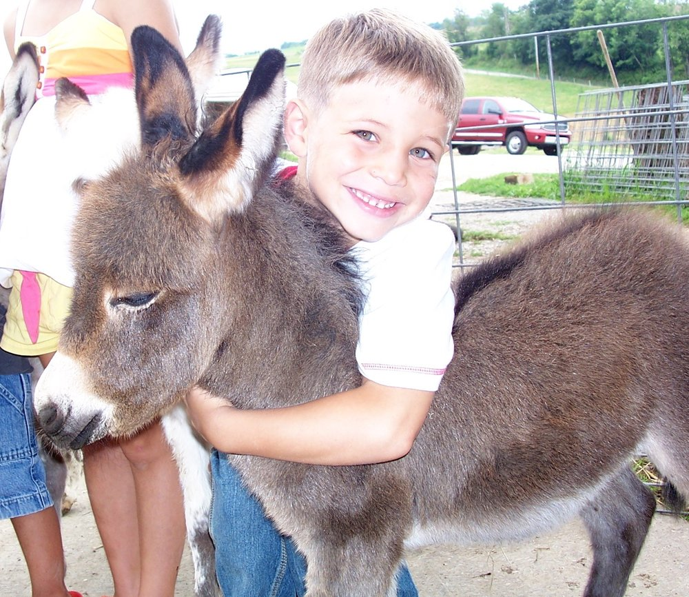 Barnyard Petting Zoo: Eighty Four, PA
