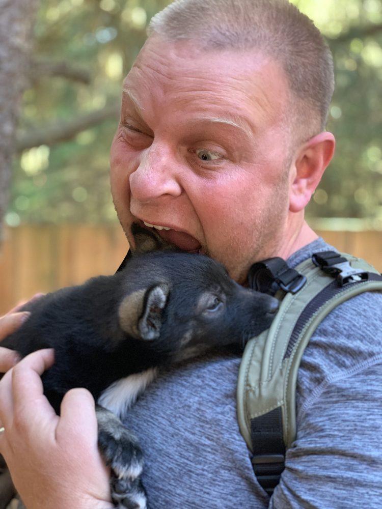 Alaska Sled Dogs & Musher's Camp: Skagway, AK