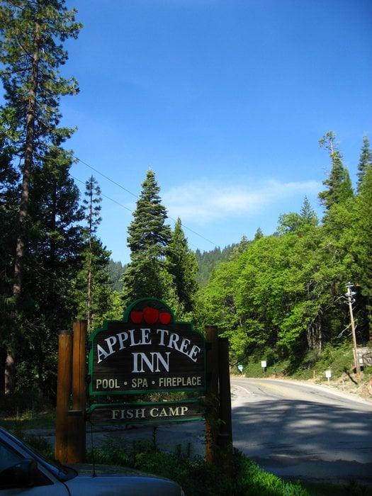 Photos for Apple Tree Inn - Yelp