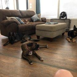 Cedar Run Dog Boarding - Request a Quote - Pet Boarding
