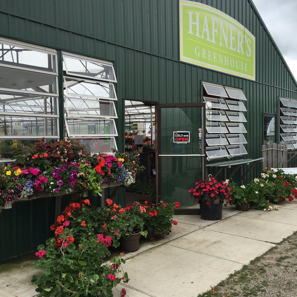 Hafner's Greenhouse: 16925 170th St, Park Rapids, MN