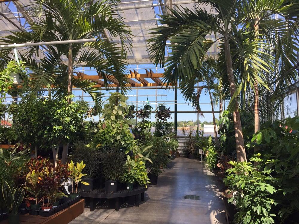 Indoor Plants Yelp