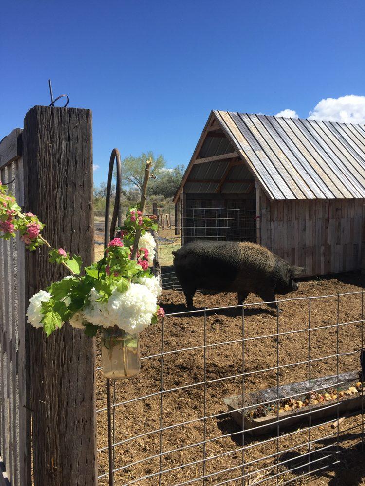 Red Acre Farm: 2322 W 4375th N, Cedar City, UT