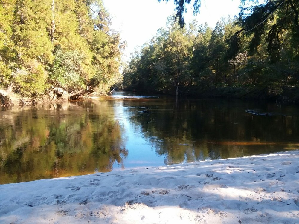 Perdido River Hiking Trail: Robertsdale, AL