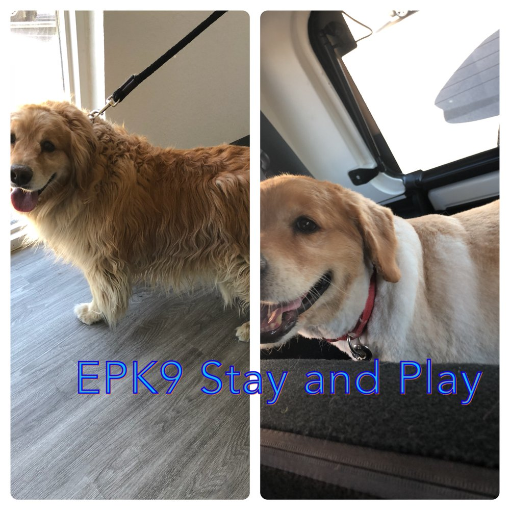EPK9 Stay and Play: 6800 Gateway E, El Paso, TX