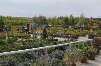 Campbell's Nurseries & Garden Centers