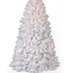 photo of christmas tree market beaverton or united states shimmering white christmas - Frontgate Christmas Tree Reviews