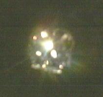 Spenger 39 s star of denmark diamond on display yelp for Spenger s fresh fish grotto