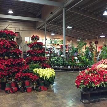 Armstrong Garden Centers 26 Photos 29 Reviews Nurseries Gardening 9939 Carmel Mountain