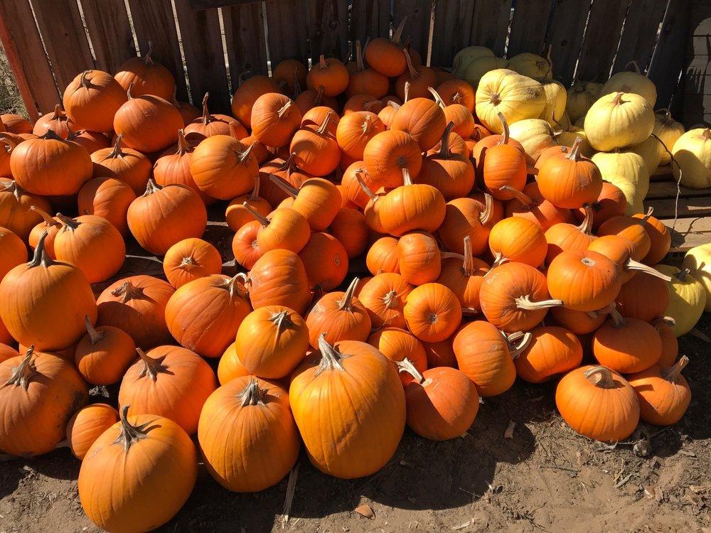 Rutiz Family Farms: 1075 The Pike, Arroyo Grande, CA