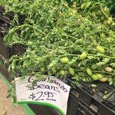 19th Avenue Farmers Market - 93 Photos & 19 Reviews