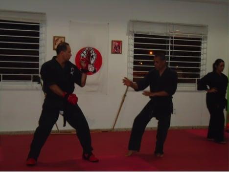 Academia de Karate Yosei: Avenue Roberto Clemente S/N, Carolina, PR