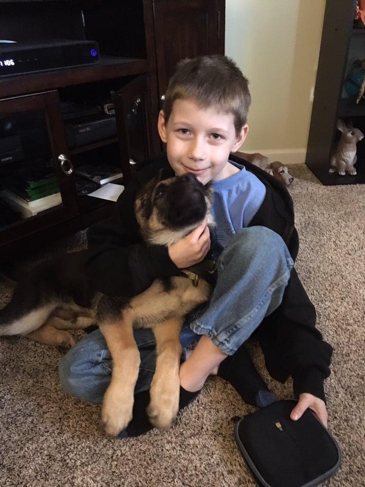 Three Rivers Dog Training: Pittsburgh, PA