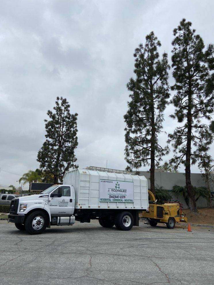 J.Rodriguez Tree Care Maintenance: La Habra, CA