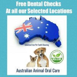 animal oral care   99 photos   holistic animal care   21 the esplanade