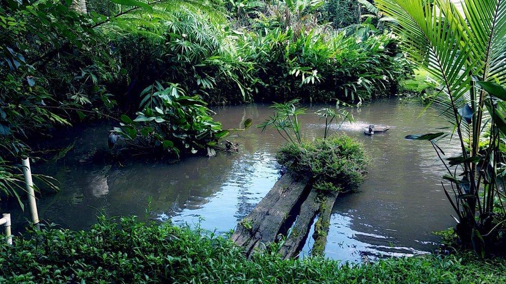 Olomana Gardens