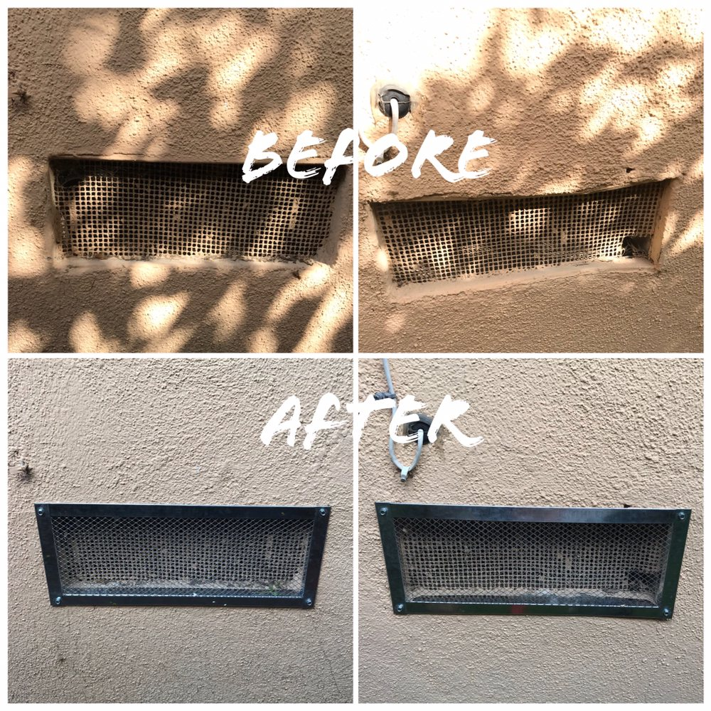 Let us rodent proof your home  Our work is exceptional, because we
