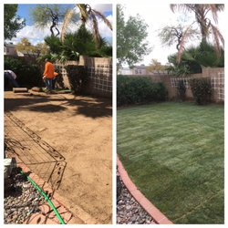 Photo Of Valle Verde Lawn Care   Phoenix, AZ, United States. New Sod