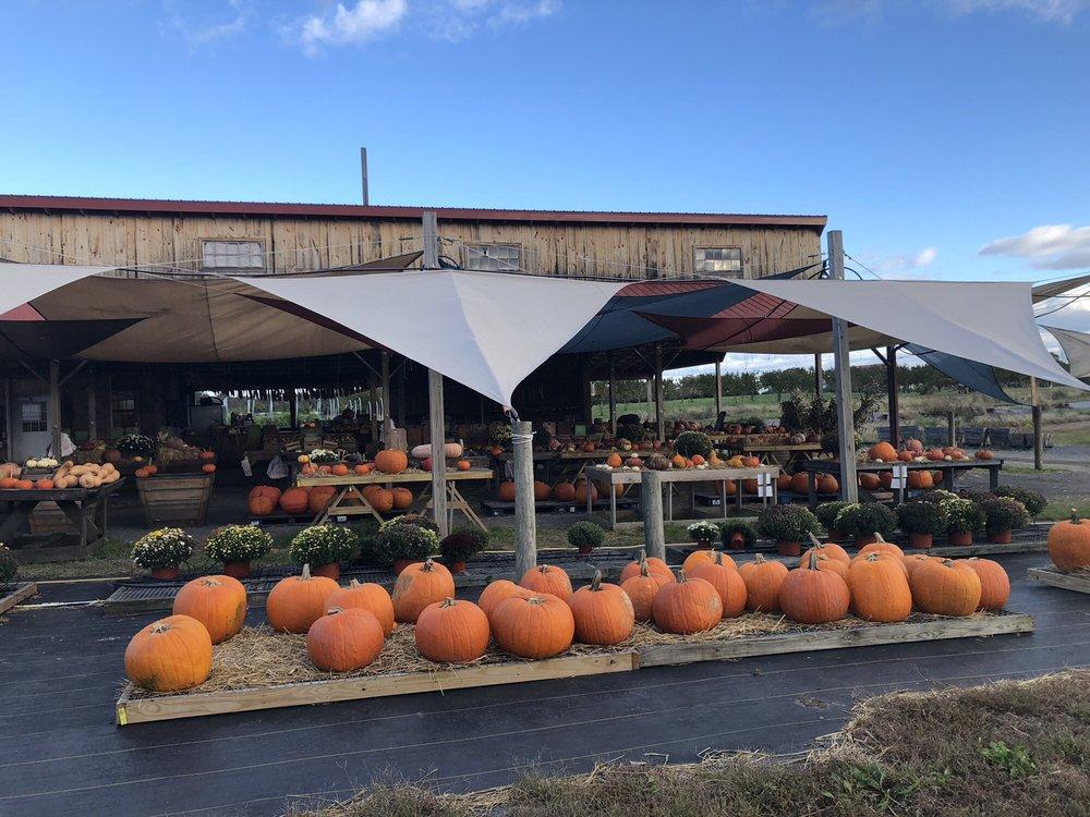 Brossman Farm Stand: 14740 James Monroe Hwy, Leesburg, VA