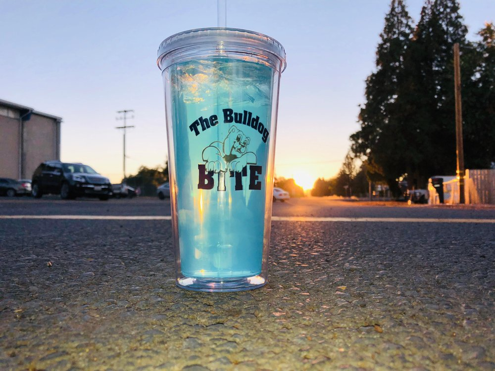 Bulldog Bite: 44218 Walnut St, McArthur, CA
